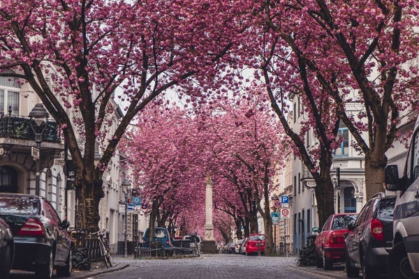 European destinations to see in Spring